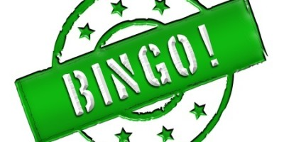 Bingo Helps Support Animal Sanctuary near Plymouth
