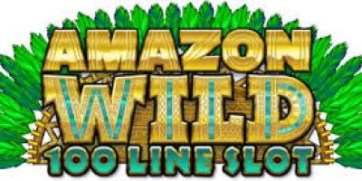 Go Treasure Hunting in Amazon Wild