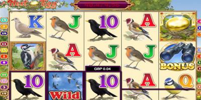 Winner Bingo Sends Players Bird Spotting