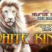 Play White King Slot at Winner Casino