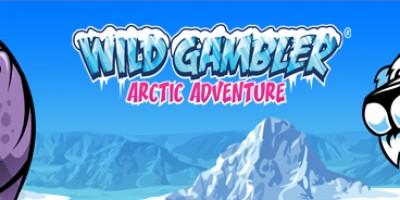 Lock Wild Symbols with Wild Gambler Arctic Adventure at Winner Slots