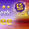 Go Wild with a £5 Winner Bingo Bonus